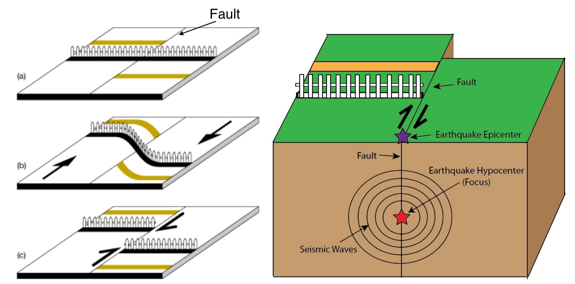 Good Vibrations  What Earthquakes Can Tell Us About The